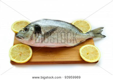 Gilthead On Wooden Board