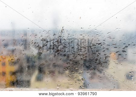 Rain drops splashing on the window pane