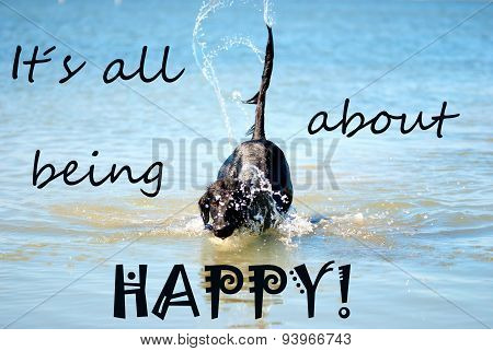 Black Dog Playing In The Ocean Quote Being Happy