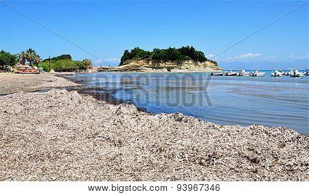 Coast on the island of Corfu, Greece, Europe