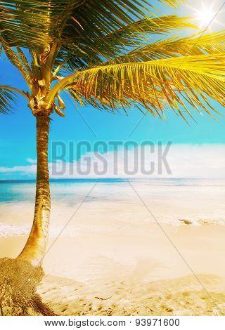 Art Hawaii  Tropical Sea Beach