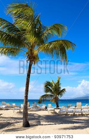 Art Caribbean Beach