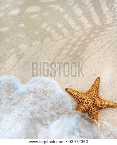 Abstract Summer Beach Background
