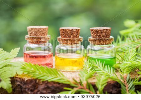 Bottles Of Essential Oil On Wooden Stump In Forest