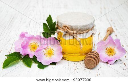 Honey And Dog Rose Flowers