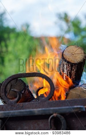 burning firewood in nature. barbecue outdoors
