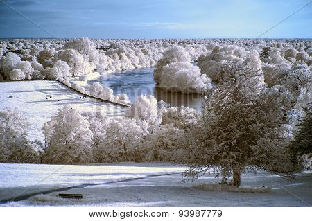 Stunning Beautiful Unique Infra Red Landscape With False Color Impact