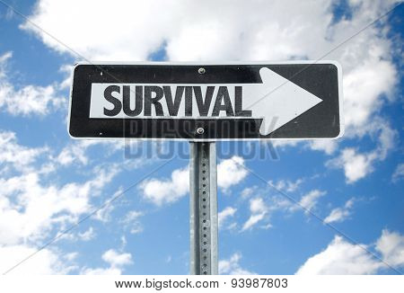 Survival direction sign with sky background