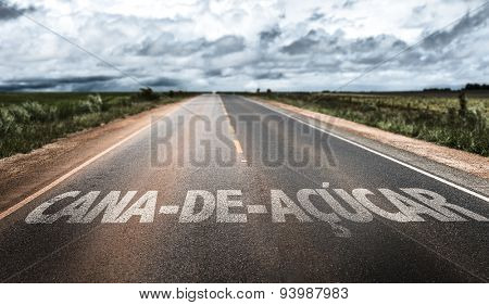 Sugarcane (in Portuguese) written on rural road