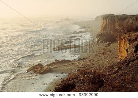 Sea coastal foggy sunset landscape of cliff edge with big cracks and withered plants after landslide