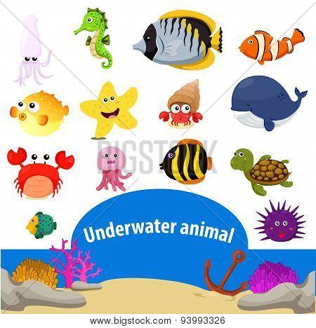 Illustrator of underwater animal