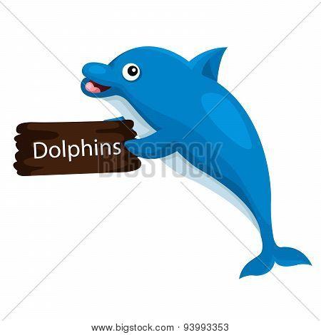 Illustrator of dolphin