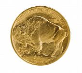 picture of coins  - Reverse side of American Gold Buffalo coin fine gold isolated on pure white background - JPG