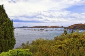 picture of windy  - Boats in the Port Lligat harbor at stormy windy weather - JPG