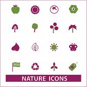 stock photo of biodiesel  - nature isolated icons - JPG