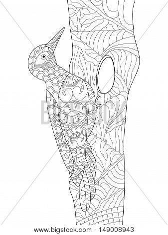 Zentangle stylized cartoon woodpecker on tree branch. Hand drawn sketch for adult antistress coloring page, T-shirt emblem, logo, tattoo with doodle, zentangle, floral design elements