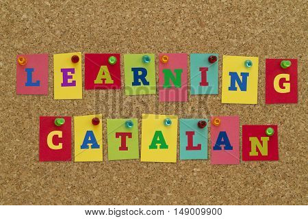 Learning Catalan word written on colorful notes pinned on cork board.