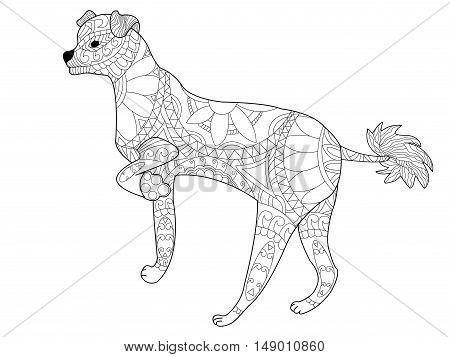 Chinese crested dog coloring book for adults vector illustration. Anti-stress coloring for adult. Zentangle style. Black and white lines. Lace pattern