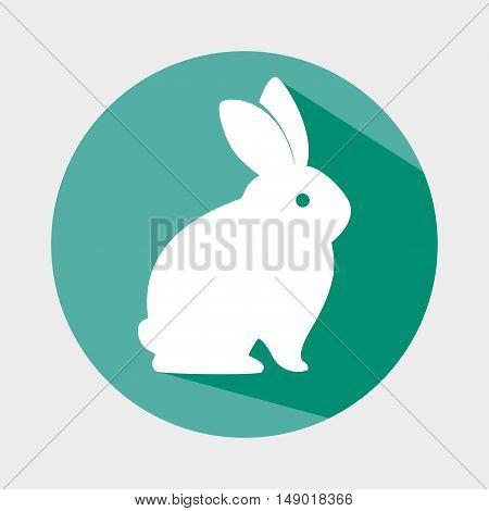 cute rabbit shape animal. bunny cartoon over colorful circle. vector illustration