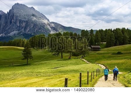 Group of middle aged Hikers walking on a mountain trail in Alpe di Siusi Northern Italy