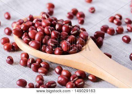 Red Kidney Beans And Wooden Spoon