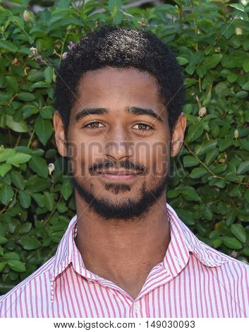 LOS ANGELES - SEP 25:  Alfred Enoch arrives to The Rape Foundation Annual Brunch on September 25, 2016 in Beverly Hills, CA