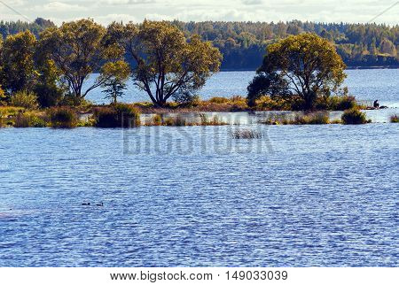 autumn landscape, tree and water in the distance a fisherman sitting and fishing, blue water and yellow vegetation, sunny day, clouds, sky, a man wearing a cap, floating ducks