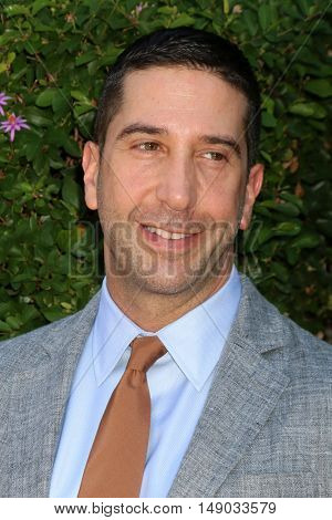LOS ANGELES - SEP 25:  David Schwimmer at the The Rape Foundation's Annual Brunch at the Private Residence on September 25, 2016 in Beverly Hills, CA