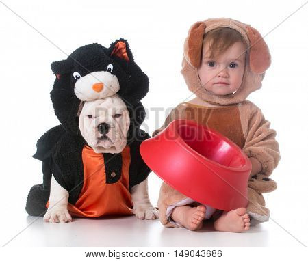 feeding the dog and cat with food dish and bone on white background