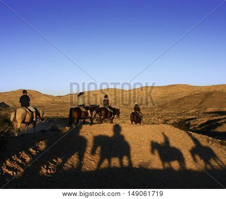 Riders on horses in late afternoon sun casting shadows