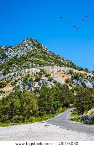 The bend on a mountain road. The migrating cranes over road. The largest alpine canyon Verdon, Provence, France