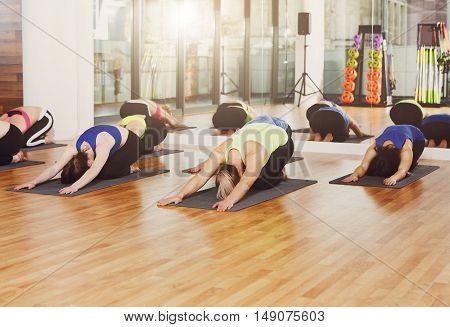 Group of young women in yoga class making exercises. Girls do back stretching. Healthy lifestyle in fitness club