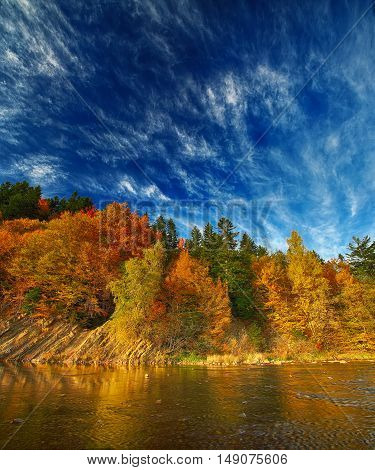 autumn forest by the river. Dramatic blue sky
