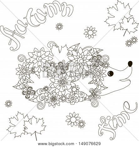 Lettering Autumn time, floral hedgehog, coloring page anti-stress vector illustration