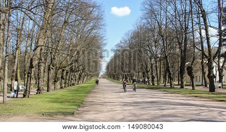 St. Petersburg, Russia - 3 May, Triple linden alley,3 May, 2016. People and spring landscape in Pavlovsk park.