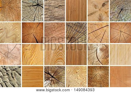 Large collection of various wooden textures. Natural background.