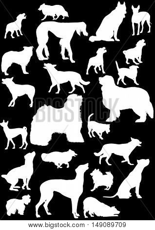 illustration with dog silhouettes isolated on black background