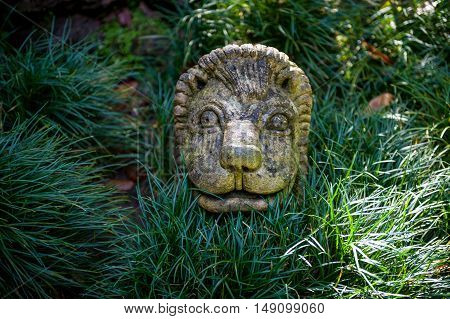 Stone lion face sculpture in the green bushes of Monte park. Funchal, Madeira island, Portugal.