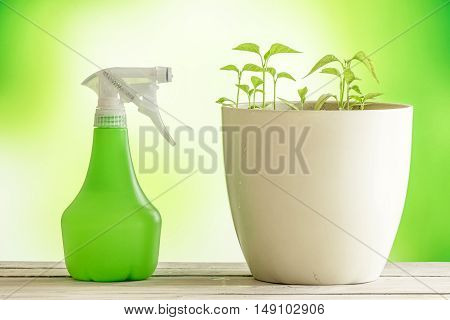 Green Plants With A Spray Can