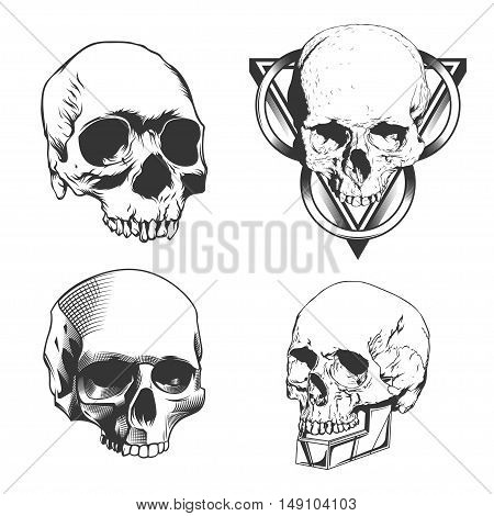 Set of four Skulls isolated on white background. Ready for your design. Vector EPS10.