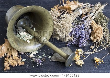 Different dried herbs in mortar. Alternative medicine