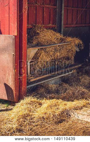 Stable With Golden Hay
