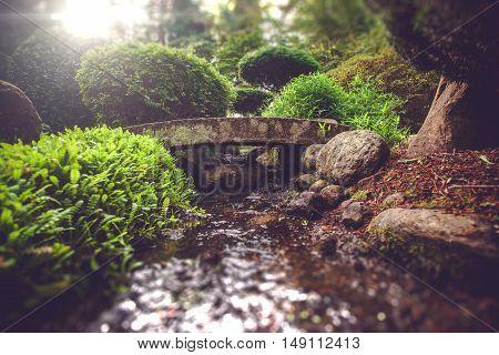 Smale Stone Bridge In A Spiritual Garden