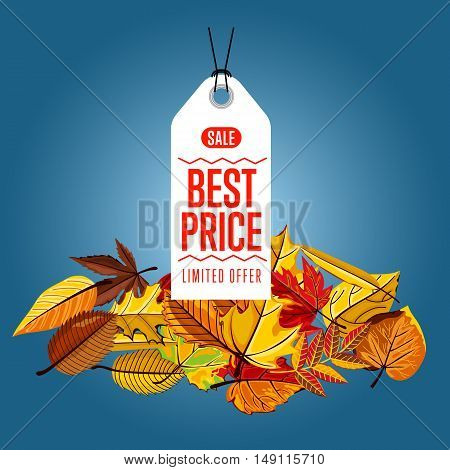 Autumn seasonal sale badge, vector illustration. Best price, limited offer label on blue background with colorful autumn leaves. White price tag with red text. Autumnal discount.