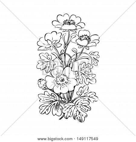Floral bush retro black on white background vector hand drawn decorative flower vintage contour closeup branch with flowers and buds print design