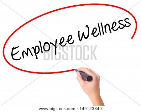 Women Hand Writing Employee Wellness With Black Marker On Visual Screen