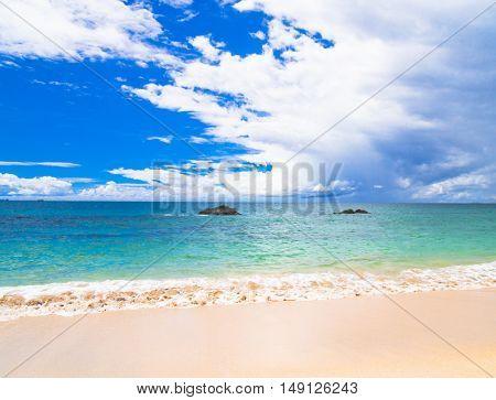 Shore Landscape In a Sunny Paradise