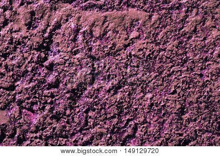 Purple swamp surface macro natural texture photo