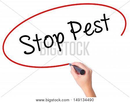 Women Hand Writing Stop Pest With Black Marker On Visual Screen
