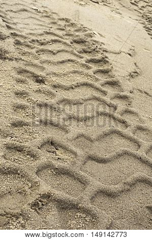 Ruts from a car tires imprinted in the sand.